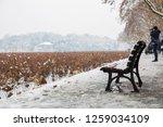 hangzhou china 9 december  2018 ... | Shutterstock . vector #1259034109