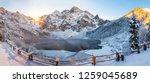 winter landscape. winter... | Shutterstock . vector #1259045689