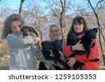 lugano  switzerland   19... | Shutterstock . vector #1259105353
