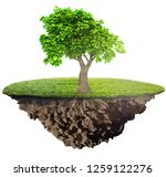 green grass island with tree on ... | Shutterstock . vector #1259122276