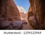 wadi watir  sinai   egypt   may ... | Shutterstock . vector #1259122969