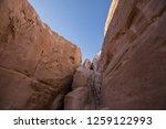 wadi watir  sinai   egypt   may ... | Shutterstock . vector #1259122993