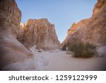 wadi watir  sinai   egypt   may ... | Shutterstock . vector #1259122999