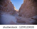 wadi watir  sinai   egypt   may ... | Shutterstock . vector #1259123020