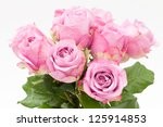 close up  violet rose on white... | Shutterstock . vector #125914853