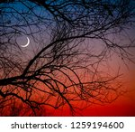 Young Moon At Sunset Against...
