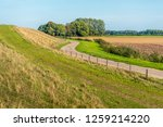 meandering country road  near... | Shutterstock . vector #1259214220