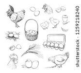 vector set of hand drawings of... | Shutterstock .eps vector #1259218240