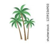 a palm tree vector set. | Shutterstock .eps vector #1259236903