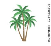 a palm tree vector set. | Shutterstock .eps vector #1259236906