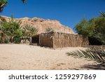wadi watir  sinai   egypt   may ... | Shutterstock . vector #1259297869