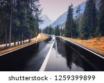 road in the autumn forest in... | Shutterstock . vector #1259399899