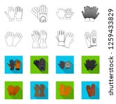 isolated object of glove and... | Shutterstock .eps vector #1259433829