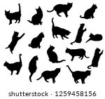 Stock vector set vector silhouettes of the cat different poses standing jumping and sitting black color 1259458156