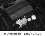 handmade mahogany jewelry box | Shutterstock . vector #1259467123
