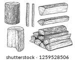 cut logs  fire wood  chopped... | Shutterstock .eps vector #1259528506