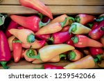Stock photo hot caribe peppers are in a pile 1259542066