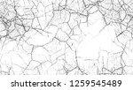 grunge watercolor dry brush... | Shutterstock .eps vector #1259545489