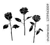set of three silhouettes rose... | Shutterstock .eps vector #1259563009