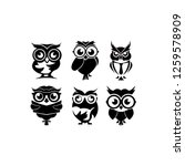 Stock vector cartoon owl with sunglasses inspiration owl vector 1259578909