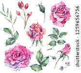 Decorative Vintage Watercolor...