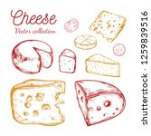 cheese collection. vector hand... | Shutterstock .eps vector #1259839516