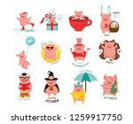 cute  stylized monthly pigs for ... | Shutterstock .eps vector #1259917750