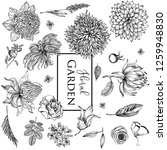 floral garden vector collection | Shutterstock .eps vector #1259948830