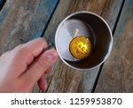 btc symbol. bitcoin at the... | Shutterstock . vector #1259953870