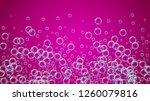 shampoo bubble. detergent bath... | Shutterstock .eps vector #1260079816