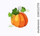 orange ripe pumpkin with green...   Shutterstock . vector #1260112753