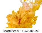 ink in water. splash paint... | Shutterstock . vector #1260209023