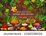 cooking spices seasonings and... | Shutterstock .eps vector #1260238426