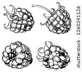 illustration set of drawing... | Shutterstock .eps vector #1260241126