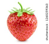 strawberry isolated on white... | Shutterstock . vector #1260259363