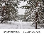 ski trail in snowy forest | Shutterstock . vector #1260490726