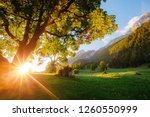 beautiful view of alpine... | Shutterstock . vector #1260550999
