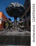 guadalajara  mexico  january 5... | Shutterstock . vector #1260556333