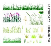 grass silhouette set. vector | Shutterstock .eps vector #1260581599