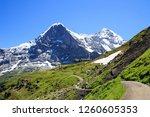 panorama trail  m nnlichen  ... | Shutterstock . vector #1260605353