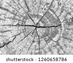 abstract background from... | Shutterstock . vector #1260658786