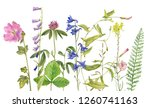 background with watercolor... | Shutterstock . vector #1260741163