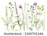 background with watercolor... | Shutterstock . vector #1260741166