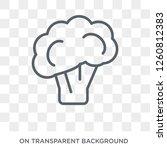 broccoli icon. broccoli design... | Shutterstock .eps vector #1260812383