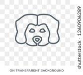 maltipoo dog icon. trendy flat... | Shutterstock .eps vector #1260906289