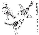 birds. hand drawn vector... | Shutterstock .eps vector #1260907279