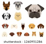 dog breeds cartoon icons in set ... | Shutterstock .eps vector #1260951286