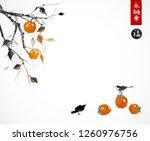 orange date plum fruit tree....   Shutterstock .eps vector #1260976756