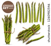 fresh green tender asparagus... | Shutterstock .eps vector #1260982546