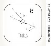 taurus hand drawn zodiac sign... | Shutterstock .eps vector #1261010473